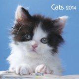 Portada de CATS 2014. BROSCHÜRENKALENDER