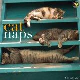 Portada de CAT NAPS 2011 CALENDAR