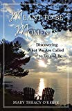 Portada de MEANT-TO-BE MOMENTS: DISCOVERING WHAT WE ARE MEANT TO DO AND BE BY MARY TREACY O'KEEFE (2014-09-22)