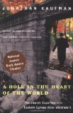 Portada de A HOLE IN THE HEART OF THE WORLD: BEING JEWISH IN EASTERN EUROPE