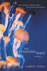 Portada de THE STANDING WAVE