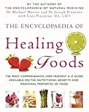 Portada de ENCYCLOPAEDIA OF HEALING FOODS