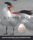 Portada de BIRD BRAINS: INSIDE THE STRANGE MINDS OF OUR FINE FEATHERED FRIENDS