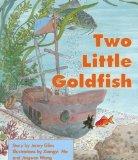 Portada de THE BIGGEST FISH (PM STORY BOOKS: ORANGE LEVEL) BY JENNY GILES (16-OCT-1997) PAPERBACK