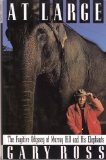 Portada de AT LARGE: THE FUGATIVE ODYSSEY OF MURRAY HILL AND HIS ELEPHANTS 1ST EDITION BY ROSS, G. (1992) HARDCOVER