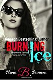 Portada de BURNING ICE (HEATWAVE SERIES) (VOLUME 3) BY OLIVIA B. DANNON (2016-03-02)