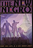 Portada de THE NEW NEGRO: READINGS ON RACE, REPRESENTATION, AND AFRICAN AMERICAN CULTURE, 1892-1938 BY PRINCETON UNIVERSITY PRESS (2007-10-28)