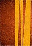 Portada de LA BIBLIA DE PROMESAS, EDICION PARA CHICOS JOVENES (SPANISH EDITION) BY REVISION 1960 (2011-01-10)